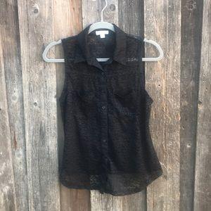 Lacy collard blouse